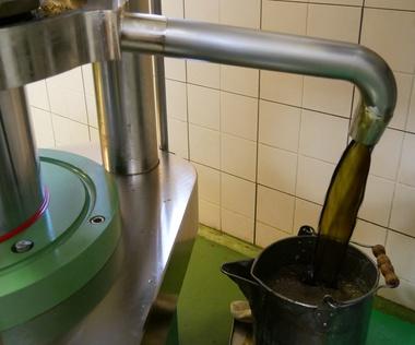 Herstellung Kürbiskernöl